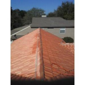 Roof Cleaning,Orlando Roof Cleaner,Tile Roofs Cleaned,No Pressure